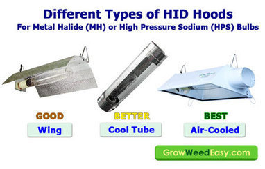 MH/HPS Grow Light Upgrade Guide | Grow Weed Easy | what are the best led lights | Scoop.it