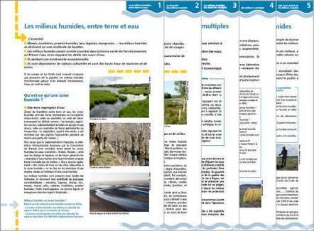 Découvrir les zones humides | Milieux humides | Zones humides - Ramsar - Océans | Scoop.it