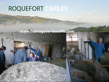 Roquefort Carles  - un reportage de la Fromagerie Beaufils | Les Fromages | Scoop.it