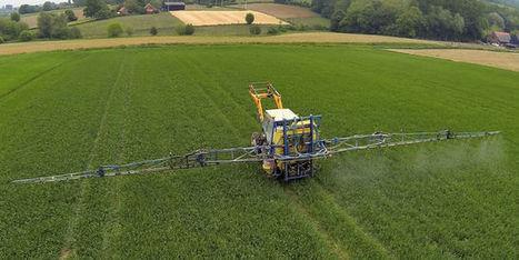 Des insectes résistants aux pesticides inquiètent les Etats-Unis | Agriculture et planète | Scoop.it