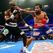 Watch Manny Pacquiao vs Tim Bradley Boxing Live Streaming | Sports Live Streaming Online 2013 | Scoop.it