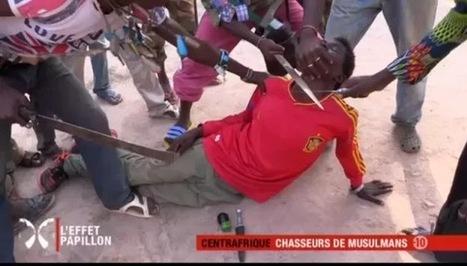 Reportage terrible de Canal+ : Chasseurs de musulmans - تزيمي بريس _ Tizimipress | tizimipress | Scoop.it