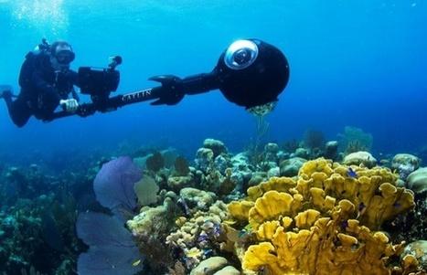 Google Street View: envie de faire un peu de plongée sous-marine ?   UseNum - Technologies   Scoop.it