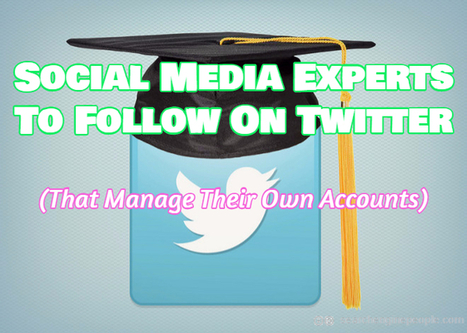 Social Media Experts To Follow On Twitter (That Manage Their Own Accounts) | Affordable Website Design Services For Small Business | Scoop.it