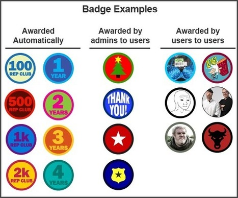 Badges, Badges, We DO Need Some Stinkin Badges To Gamify Community | Ninja Post | BI Revolution | Scoop.it