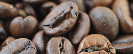 Kaffee schadet nicht | rezepte | Scoop.it