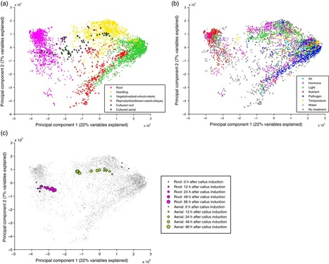 Large-scale atlas of microarray data reveals the distinct expression landscape of different tissues in Arabidopsis - The Plant Journal | Plant Gene Seeker -PGS | Scoop.it