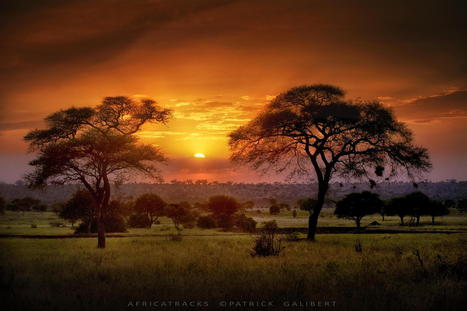Tanzania Sunset. by Patrick Galibert | Music, Videos, Colours, Natural Health | Scoop.it