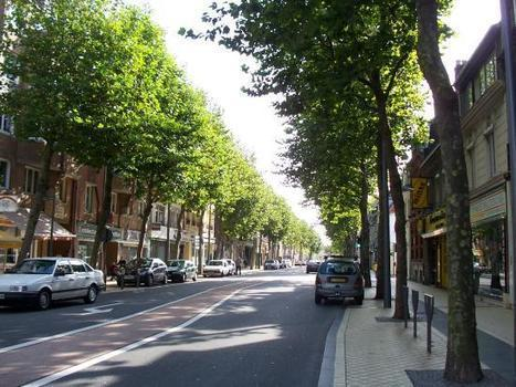 Why Trees Make For Safer Streets | Transition Culture | Scoop.it