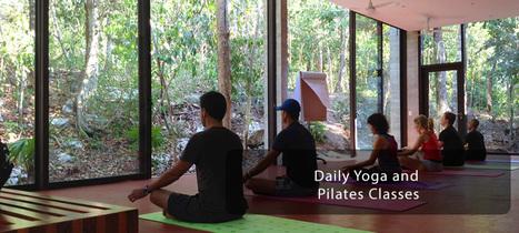 TAO Wellness Center | TAO Rentals | Scoop.it