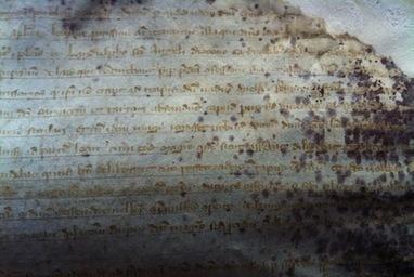 Le procès des Templiers, vu par les Archives du Vatican | GenealoNet | Scoop.it