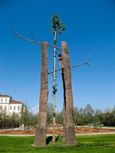 Giuseppe Penone | Art Installations, Sculpture, Contemporary Art | Scoop.it