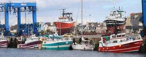Pêche : impacts insoupçonnés de l'interdiction du rejet des poissons - Agro Media | Actualité de l'Industrie Agroalimentaire | agro-media.fr | Scoop.it