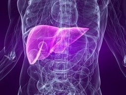 Liver Failure Symptoms | LIVER HEALTH----IT'S MORE IMPORTANT THAN YOU KNOW-- | Scoop.it