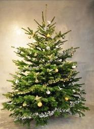 Les piouzelzok sont les bras droits du Père Noël | piouzelzok | Scoop.it