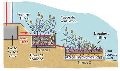 Traitement des eaux usées domestiques par phytoépuration   JOIN SCOOP.IT AND FOLLOW ME ON SCOOP.IT   Scoop.it