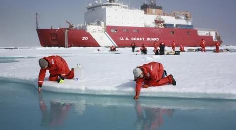 Fonte des glaces en #Arctique: les espèces invasives débarquent avec la navigation commerciale | Hurtigruten Arctique Antarctique | Scoop.it