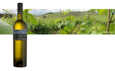 wine trebbiano | Gustoperamore.com | Italian Fine Wines | Scoop.it