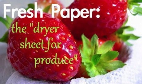 'FreshPaper' May Hold Key to Preserving More of World's Produce   Food issues   Scoop.it
