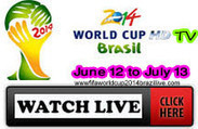 FIFA World Cup 2014 Live   FIFA WORLD CUP TV   Scoop.it
