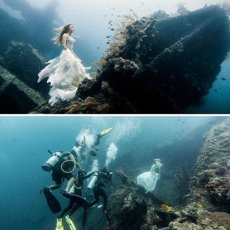 19 Reasons Why Scuba Diving Will Give You The Most Magical Experience Of Your Life | DiverSync | Scoop.it