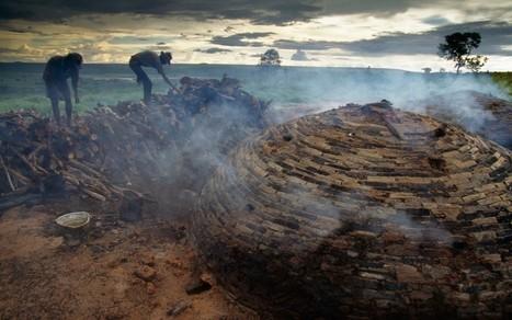 Can civilisation reboot without fossil fuels? – Lewis Dartnell | Post-Sapiens, les êtres technologiques | Scoop.it