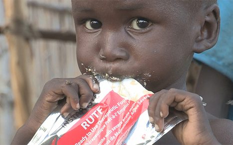 South Sudan on brink of famine - Telegraph | Food Security | Scoop.it