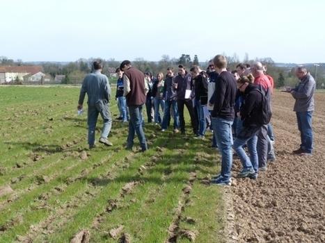 Mirecourt, 10 ans d'une expérimentation au long cours | Agriculture et environnement | Scoop.it