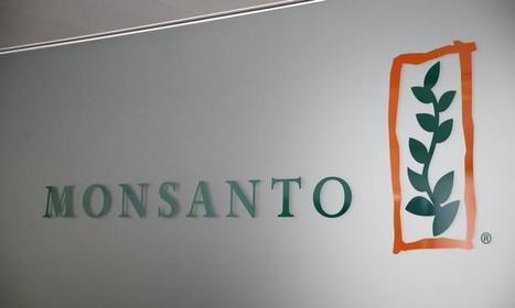 Henderson calls for investor vote on Bayer's takeover of Monsanto | WHAT THINGS ARE GMO FOODS OR SUPPORTERS OF MONSANTO? Weather Disasters | Scoop.it