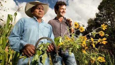 Vers d'autres mondes - Le maïs mexicain, un grain de résistance - Saison 2 - Lundi 5 Septembre 15h45   Confidences Canopéennes   Scoop.it