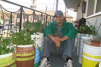 Expanding Beyond Gardening | Urban Organic Gardener | Annie Haven | Haven Brand | Scoop.it
