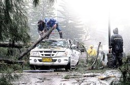 """UN lauds disaster preparedness 