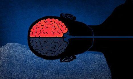 Why We Sleep So Poorly In Unfamiliar Places   human development   Scoop.it