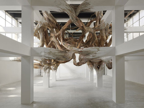 henrique oliveira: baitogogo at palais de tokyo, paris   Contemporary Art, Design and Technology   Scoop.it