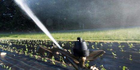 Les paysans devront économiser l'eau | Questions de développement ... | Scoop.it