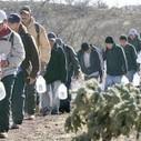 Democrats plotting immigration blitz | Restore America | Scoop.it