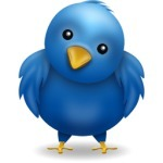 The Ultimate Guide to Twitter Theme Design | SM | Scoop.it