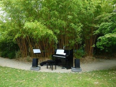 Jardin des sensations, parc floral de Paris - Alexandre Levy | DESARTSONNANTS - CRÉATION SONORE ET ENVIRONNEMENT - ENVIRONMENTAL SOUND ART - PAYSAGES ET ECOLOGIE SONORE | Scoop.it