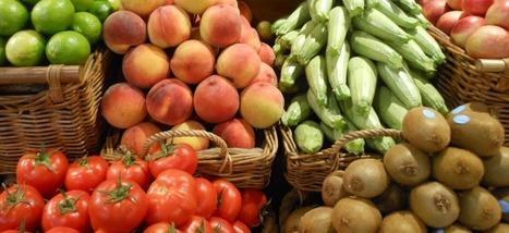 Oui, manger bio a du sens | La Bio en question | Scoop.it