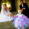 The Best Perth Wedding Photographers