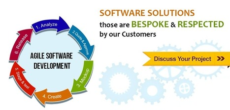 Software Development Services | Indies | It Development and Consulting Services | Scoop.it