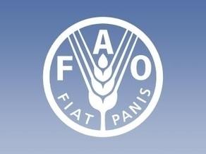 La FAO et l'APIA lancent un projet pour réduire le chômage et la pauvreté des jeunes | CIHEAM Press Review | Scoop.it