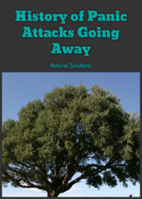History of Panic Attacks Going Away: Natural Solutions | In Our Lives | Scoop.it