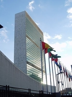 The U.N.'s Development Goals: Business Must Be a Full Partner - Forbes | NGOs in Human Rights, Peace and Development | Scoop.it