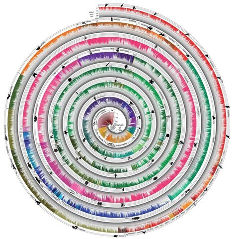 World's Largest Tree Of Life Visualizes 50,000 Species Across Time | this curious life | Scoop.it