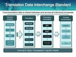 """Developing Meaningful Standards in Business Translation 