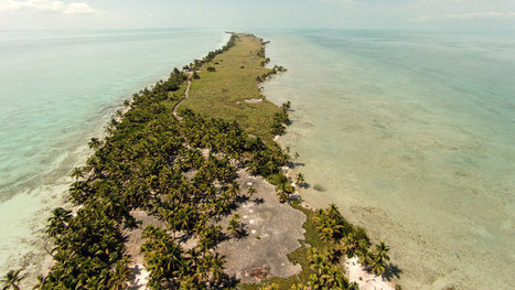 Leonardo Dicaprio: Turn Blackadore Caye into a wildlife sanctuary, not a rich man's playground.   All about water, the oceans, environmental issues   Scoop.it