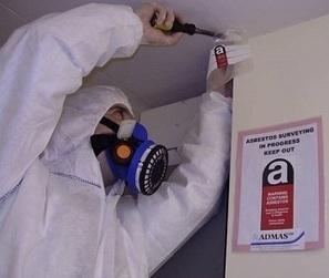 Understanding The Types Of Asbestos Survey   Asbestos Surveys   Scoop.it