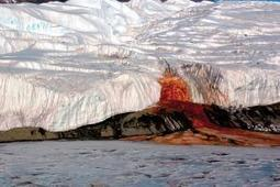 Antarctica's Blood Falls are a sign of life below ground - environment - 28 April 2015 - New Scientist | Sustainable Futures | Scoop.it