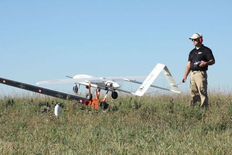 Unmanned aerial systems to detect emerging pest insects, diseases in food crops | Tech in agriculture | Scoop.it